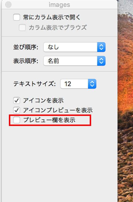 mac_file_info03